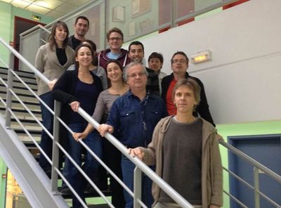 The team of INSERM Unit 1048 in Toulouse.